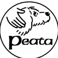 Peata Pet Therapy Ireland