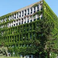 Institut de Biologie Moléculaire et Cellulaire (IBMC)