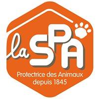 La SPA - Refuge de Chateaubourg 35