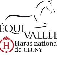 Equivallée Haras national de Cluny