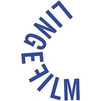 LingeFilm