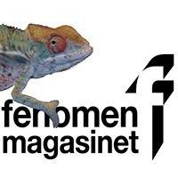 Fenomenmagasinet