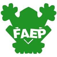 FAEP : Fédération des Associations Étudiantes Picardes