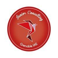 Junior Consulting Grenoble IAE