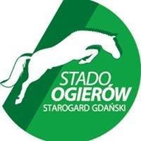Stado Ogierów Starogard Gdański