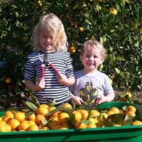 Back Gate Farm and Nursery