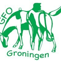 Groningen Floorball Open