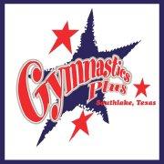 Gymnastics Plus