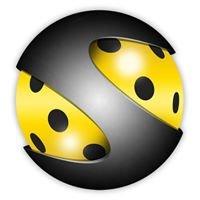 Floorball DM