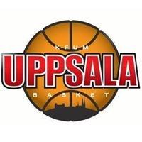 Uppsala Basket Dam