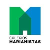 Colegio San Felipe Neri - Cádiz