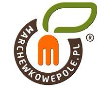marchewkowepole.pl