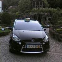 Táxis & MiniBus - ArriveSpring -Tours e Animação Turística