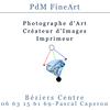 Pdm Fineart