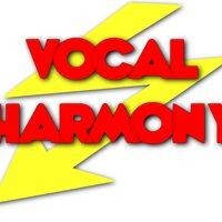 Vocal Harmony Swansea Choir