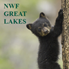 National Wildlife Federation Great Lakes Regional Center