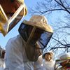 Beekeepers of the Tennessee Valley and Anywhere Else