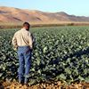 California Climate and Agriculture Network