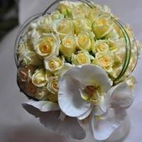 Ozolziedi ziedu salons