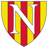 Voetbalvereniging Nederhorst
