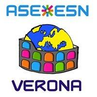 ASE ESN Verona - Erasmus Student Network