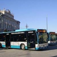 Fan della Trieste Trasporti
