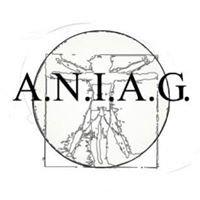 Aniag - Associazione Nazionale Ingegneri Architetti Geometri