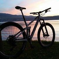 Veloteria Bike Shop