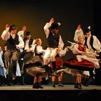 Alba Regia Dance Ensemble/ Alba Regia Táncegyüttes