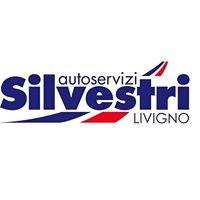 Autoservizi Silvestri
