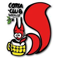 Heinrich-Cotta-Club e.V.