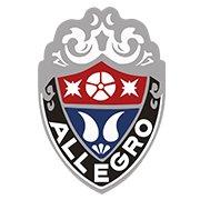 Allegro Bikes