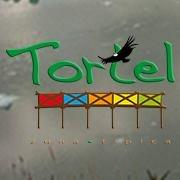 Ilustre Municipalidad de Tortel