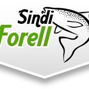 Sindi forell