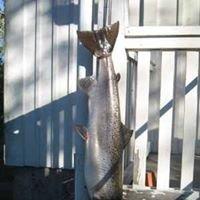 Örekilsälvens Laxfiske