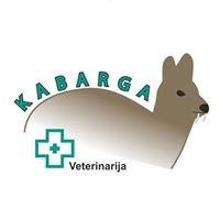 """UAB """"Kabarga"""" veterinarijos gydykla - vaistinė"""