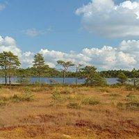 Soomaa Rahvuspark, ESTONIA