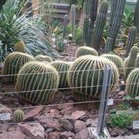 Botanická zahrada v Liberci