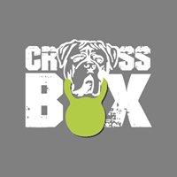 Crossbox.at