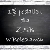 Społeczność Zespołu Szkół Budowlanych w Bolesławcu