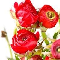 Myliu gėles