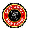Capoeira Belgrade - Mestre Pulmao