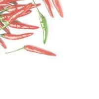 Green Chili Indian Bistro