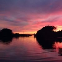 Haulover Canal Fishing Report