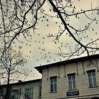 Colegiul National Grigore Ghica Pagina Oficiala