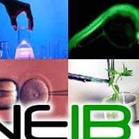 Sexto Encuentro nacional de estudiantes de Ingeniería en Biotecnología