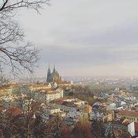 Evropská dobrovolná služba Brno / EVS in Brno