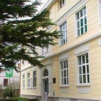 Srednja škola Buzet