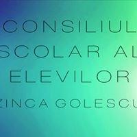 Consiliul Școlar al Elevilor- Colegiul Național Zinca Golescu
