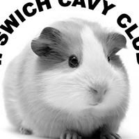 Ipswich Cavy Club